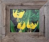 MyBarnwoodFrames – Homestead Reclaimed Barn Wood 16×20″ Picture Frame (Frame Width 3″) For Sale