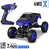 tokky RC Crawler - 1:18 Monster Truck 2.4GHz Remote Control 4WD RTR Rechargeable Electric Power RC Car, Racing Off Road Toy Car All Adults & Kids, Rock Rover Truck Wild Monster Rock Climbing King