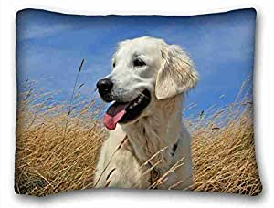 Custom ( Animals dogs labradors color grass puppy ) Custom Zippered Pillow Case 20x26 inches(one sides) from Surprise you suitable for Twin-bed