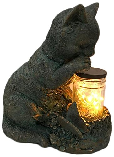 (Cat Sitting with the Fairy Lights In a Jar)