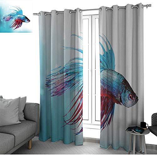 Aquarium Curtains for Bedroom/Living Room Curtain Siamese Fighting Betta Fish Swimming in Aquarium Aggressive Sea Animal Window Decor Sky Blue Dark Coral W84 x L96 Inch