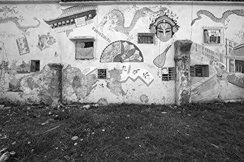 - 24 x 36 B&W Giclee Print Murals Painted on a Building on Dragones Street, in The Chinatown Section Havana, Cuba 2010 Highsmith 26a