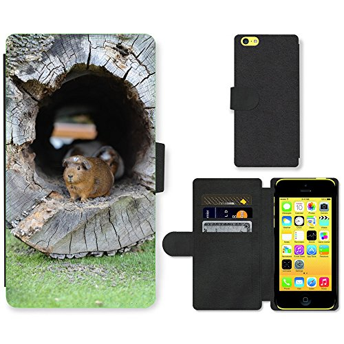Just Phone Cases PU Leather Flip Custodia Protettiva Case Cover per // M00127383 Guinée Pig Zoo Doux // Apple iPhone 5C