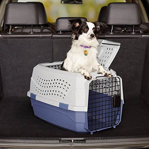 AmazonBasics-23-Inch-Two-Door-Top-Load-Pet-Kennel