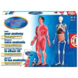 : The Human Body - Learn Your Anatomy