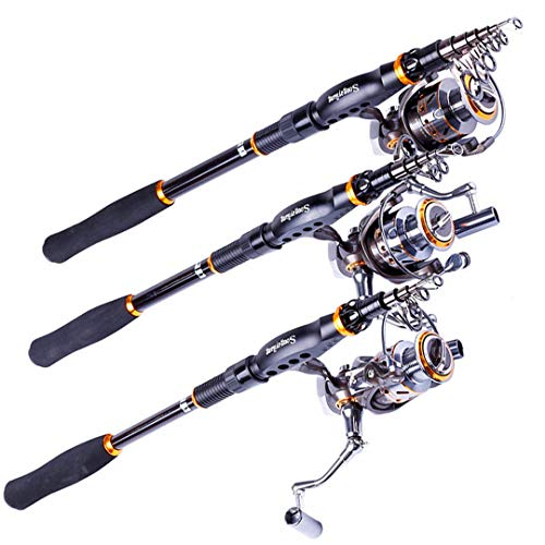Tanfishes Fishing Rod Reel Combos Portable Telescopic Fishing Pole with Full Metal Spinning Fishing Reel 2.1M DK3000