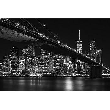 Amazon.com: Brooklyn Bridge New York City NYC Skyline at