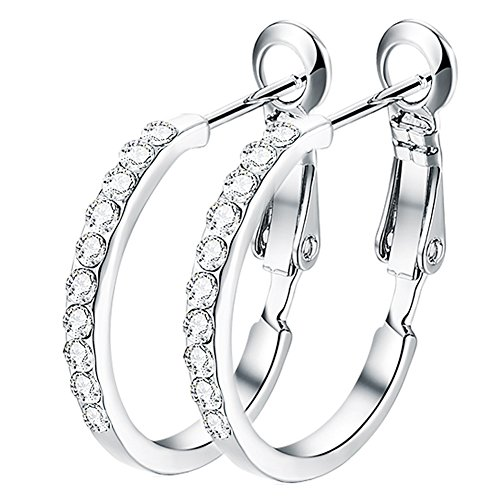 Hoop Dangle Pierced Earrings (Women's Stainless Steel Pierced Hoop Earrings Cubic Zirconia For Teen Girls)