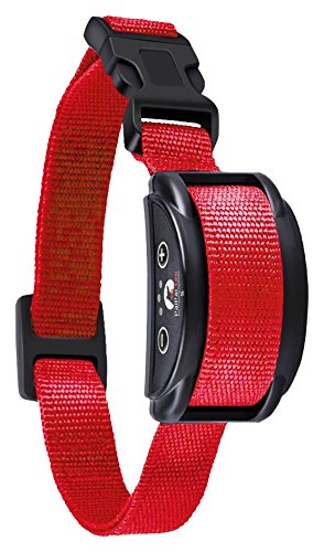 Paipaitek [UPGRADED 2018] No Bark Collar - Best Rechargeable Anti-Barking Shock Control with 5 Levels Automatic Bark Collar for Small Medium Large Dogs Electronic Safe Stop Bark (6+lbs) by Paipaitek