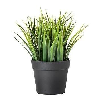Amazon De Ikea Fejka Kunstliche Topfpflanze Gras 10 5cm