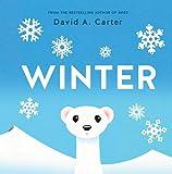 Winter: A Pop-up Book (Seasons Pop-up)