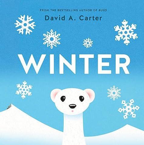 Winter: A Pop-up Book (Seasons Pop-up) - Winter Stars