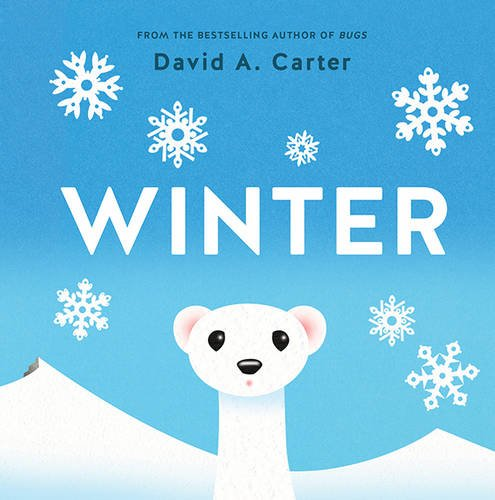 Winter: A Pop-up Book (Seasons Pop-up)