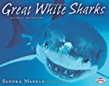 Great White Sharks, Sandra Markle, 1575057476
