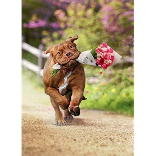 Dog Carrying Bouquet Of Flower Valentine's Day Card Sales