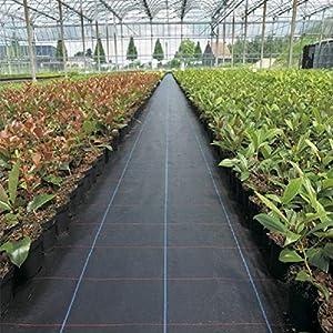 Piantagione di piante per il controllo delle erbacce - Barriera erbaccia per copertura suolo - Ecologica per il… 3 spesavip