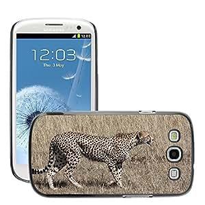 Hot Style Cell Phone PC Hard Case Cover // M00109023 Cheetah Hunt Predator Cat Speed // Samsung Galaxy S3 S III SIII i9300