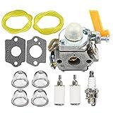HIPA Carburetor + Fuel Line Filter Spark Plug for Ryobi RY09550 RY09605 RY09951 Backpack Leaf Blower Vacuum RY52604 RY52907 TP26 Pole Pruner