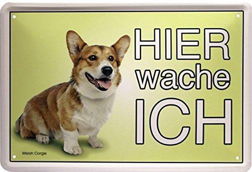 Hier wache ich –  Welsh corgie –  Cane Dog 20 x 30 cm Targa in metallo 1546 Blech
