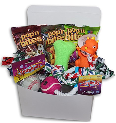 Good Dog Care Package New Pet Gift box (Dog Treat Gift Baskets)