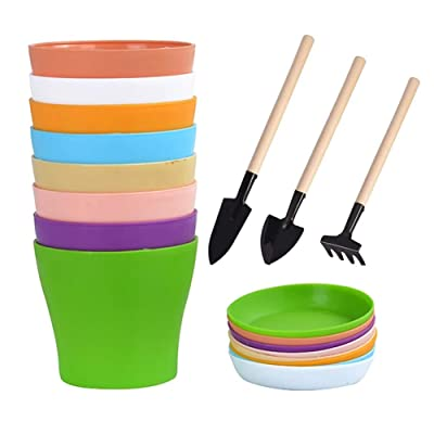 "Willow Dragon 8 Pcs 6.6"" Colorful Flower Plant Pots/Plastic Planters Pot with Saucer and Mini Garden Tools Set: Garden & Outdoor"