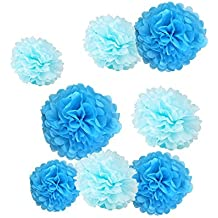 Fonder Mols 12pcs 8'' 10'' Tissue Paper Pom-poms Flower Nautical Themed Party Supplies Ball Wedding Party Baby Shower Outdoor Hanging Decoration - Mixed Blue