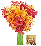 KaBloom Fall Collection: Exotic Red and Golden Yellow Mokara Orchids from Thailand without Vase and One Box of Lindt Chocolates