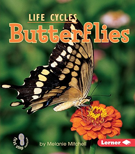 Butterflies (First Step Nonfiction _ Animal Life Cycles)