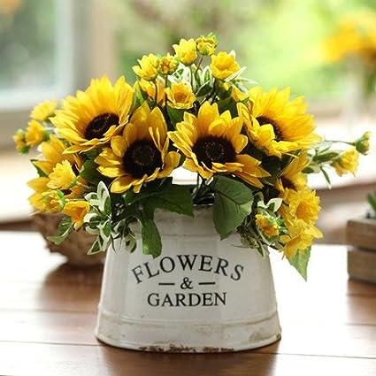 50 franceses Dwarf Semillas de girasol - fácil cultivo y hermoso, hacen sus más feliz jardín planta las semillas de flor del envío 7