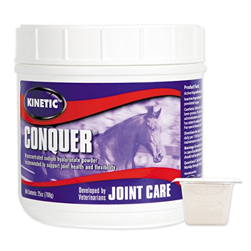 Conquer Powder, 25 oz by Kinetic by Kurt