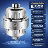 12-Stage Shower Water Filter - 2 Cartridge Included - Removes Chlorine, Impurities & Unpleasant Odors - Boosts Skin and Hair Health - For Any Shower Head and Handheld Shower AquaHomeGroup