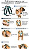PetSafe 3in1 Harness, from The Makers of The Easy