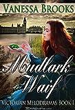 Mudlark Waif (Victorian Melodramas Book 1)