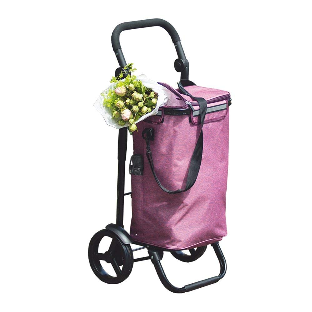Zehaer Portable Trolley, Aluminum Shopping Cart 8 Inch Wheel Full Car Foldable Wide Flat Small Pull Cart with Ice Pack (Color : H) (Color : F)
