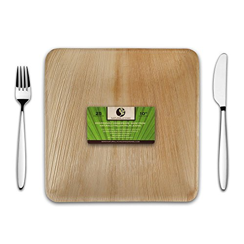 Disposable Eco Palm Paper Plates: Square Compostable, Biodegradable Heavy Duty Large Dinner Party Plate - Comparable to Bamboo Wood Fiber - Nice, Elegant Looking Plant Based Dishware: 25 Pack