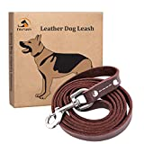 Fairwin Brown 6FT/ 5FT Genuine Leather Dog Leash Leads Rope for Large/Medium/Small Dogs Training/Walking (rivet-5/8 x 5.6 Foot)