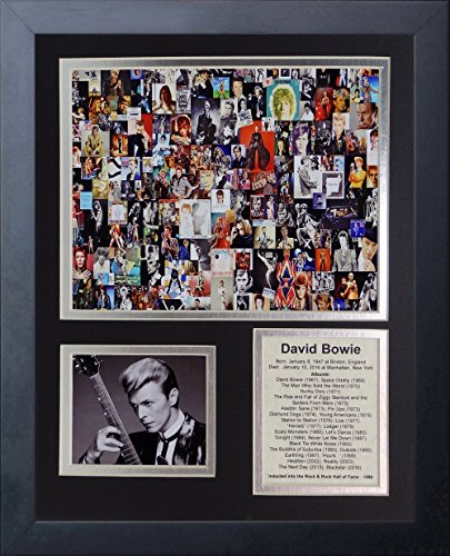 DAVID BOWIE COLLAGE ALBUM LIST MUSUC HALL OF FAME 1996 8X10 PHOTO FRAMED