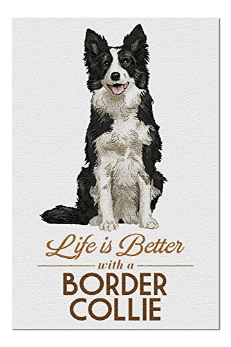 Border Collie - Life is Better - White Background (20x30 Premium 1000 Piece Jigsaw Puzzle, Made in USA!)