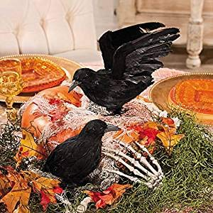 (Fun Express Realistic Feathered Crows -Set of 2 - Great Halloween Prop)