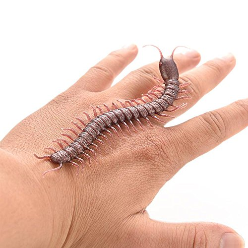 ZLTFashion 4pcs Halloween Haunted House Funny Prank Spoofing Toy Model Geek Gadget Simulation Fake Centipede For Party Tricky Funny Novelty Toys