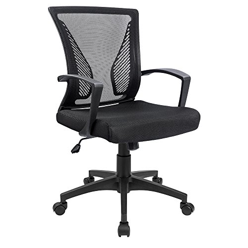 Furmax Office Chair Mid Back Swivel Lumbar Support Desk Chair, Computer Ergonomic Mesh Chair With Armrest (Ribbed Support)