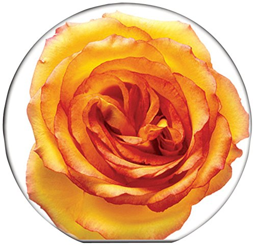- Gift Trenz Rose Yellow Round Magnetic Bookmark