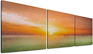 NOAON Canvas Prints Ready to Hang Installed 16 x 16 Inch x 3 Pcs for Home Decor Wall Art Wood Framed Sunrise Landscape Rice Rice Paddy Paddy Field