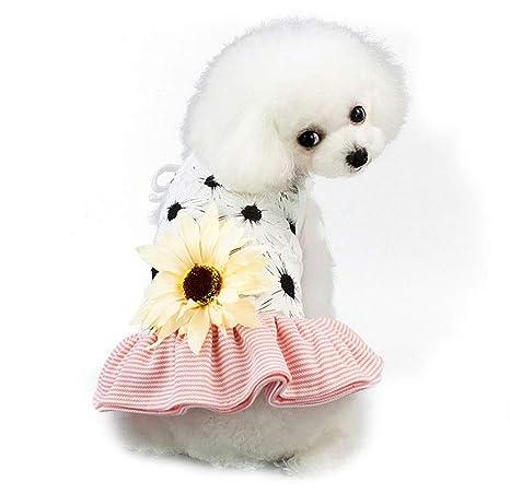 Vestido del Gato del Perro del Animal DoméStico Lindo Hermoso De ...