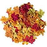 Bassion-1000-Pcs-Assorted-Mixed-Fall-Colored-Artificial-Maple-Leaves-for-Weddings-Events-and-Decorating