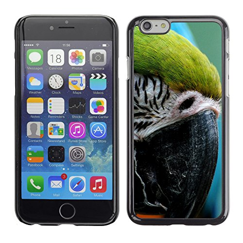 Premio Sottile Slim Cassa Custodia Case Cover Shell // V00003617 perroquet ara // Apple iPhone 6 6S 6G PLUS 5.5""