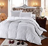 Alternative Comforter - Royal Hotel's 300 Thread Count Queen Size Goose Down Alternative Comforter 100% Cotton 300 TC - 750FP - 70OZ - White Solid