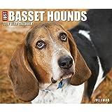 Just Basset Hounds 2018 Daily Desk Boxed Calendar