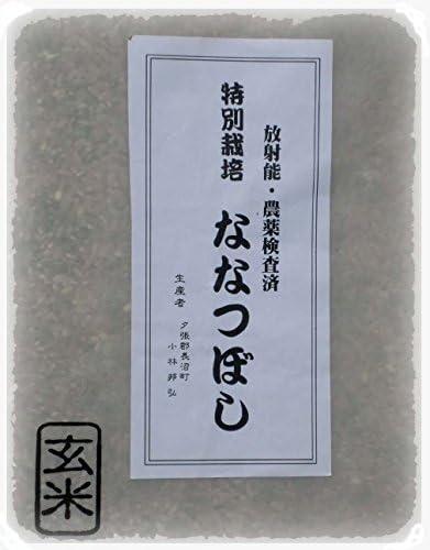 特別栽培 ななつぼし 玄米 5kg×2(天恵農場)