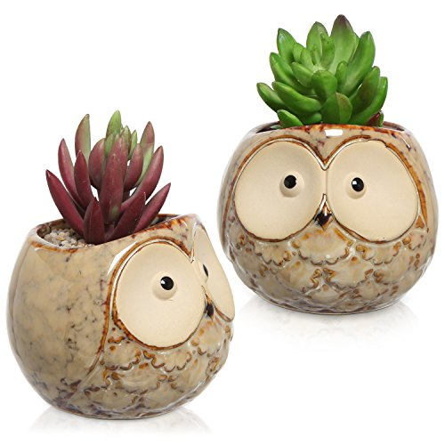 Set of 2 Owl Design Mini Ceramic Plant Container Flower Pots, Window Sill Succulent Planters, Brown